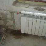 Радиаторы Жуки